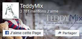 Page Facebook TeddyMix
